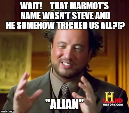 "Alan Steve animal conspiracy theory |  WAIT!     THAT MARMOT'S NAME WASN'T STEVE AND HE SOMEHOW TRICKED US ALL?!? ""ALIAN"" 