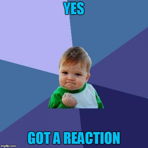 Success Kid Meme | YES GOT A REACTION | image tagged in memes,success kid | made w/ Imgflip meme maker