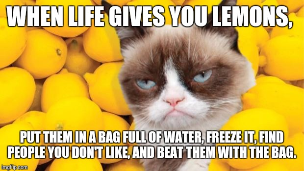 Grumpy Cat lemons | WHEN LIFE GIVES YOU LEMONS, PUT THEM IN A BAG FULL OF WATER, FREEZE IT, FIND PEOPLE YOU DON'T LIKE, AND BEAT THEM WITH THE BAG. | image tagged in grumpy cat lemons | made w/ Imgflip meme maker