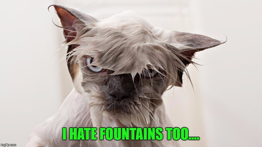 I HATE FOUNTAINS TOO.... | made w/ Imgflip meme maker