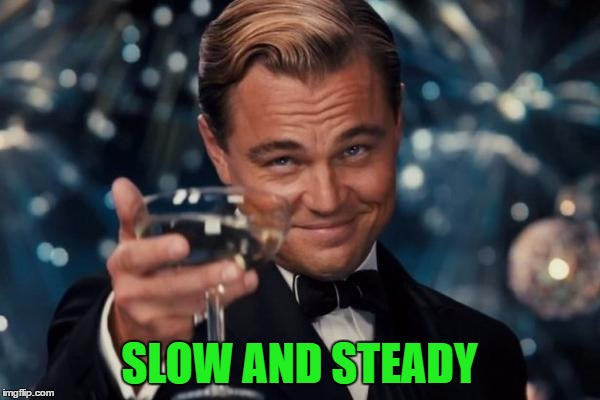 Leonardo Dicaprio Cheers Meme | SLOW AND STEADY | image tagged in memes,leonardo dicaprio cheers | made w/ Imgflip meme maker