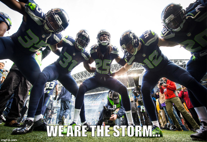 WE ARE THE STORM... | image tagged in seattle seahawks | made w/ Imgflip meme maker