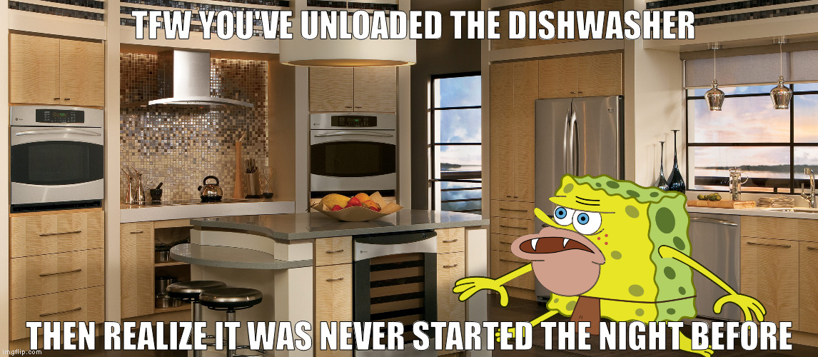 I don't know how many people can relate to this. But it does suck, let me tell you! | TFW YOU'VE UNLOADED THE DISHWASHER THEN REALIZE IT WAS NEVER STARTED THE NIGHT BEFORE | image tagged in spongegar meme,spongegar,kitchen,dishwasher,spongebob | made w/ Imgflip meme maker