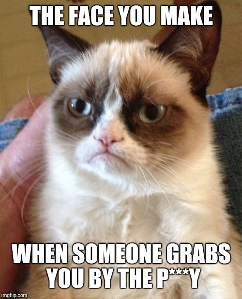 Grumpy Cat Meme | THE FACE YOU MAKE WHEN SOMEONE GRABS YOU BY THE P***Y | image tagged in memes,grumpy cat | made w/ Imgflip meme maker
