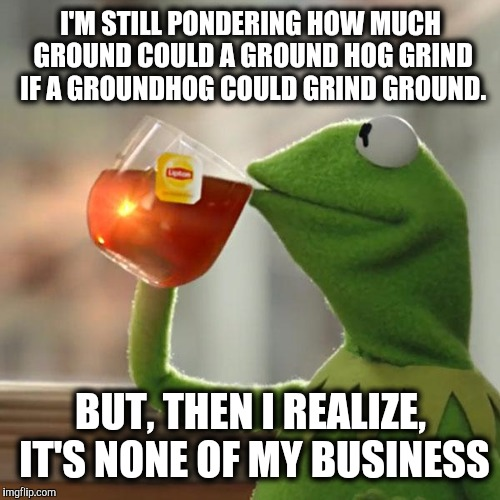 But Thats None Of My Business Meme | I'M STILL PONDERING HOW MUCH GROUND COULD A GROUND HOG GRIND IF A GROUNDHOG COULD GRIND GROUND. BUT, THEN I REALIZE, IT'S NONE OF MY BUSINES | image tagged in memes,but thats none of my business,kermit the frog | made w/ Imgflip meme maker