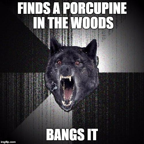 Insanity Wolf Meme | FINDS A PORCUPINE IN THE WOODS BANGS IT | image tagged in memes,insanity wolf | made w/ Imgflip meme maker