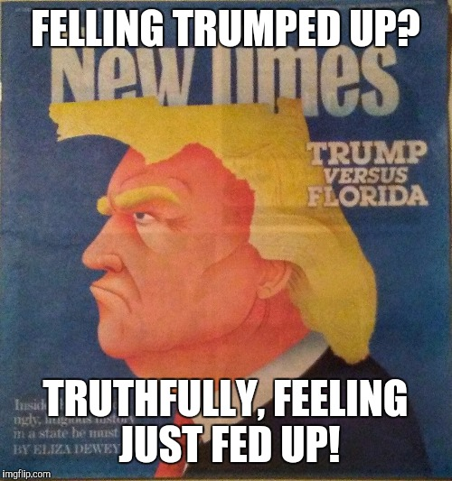 FELLING TRUMPED UP? TRUTHFULLY, FEELING JUST FED UP! | image tagged in trump vs florida | made w/ Imgflip meme maker