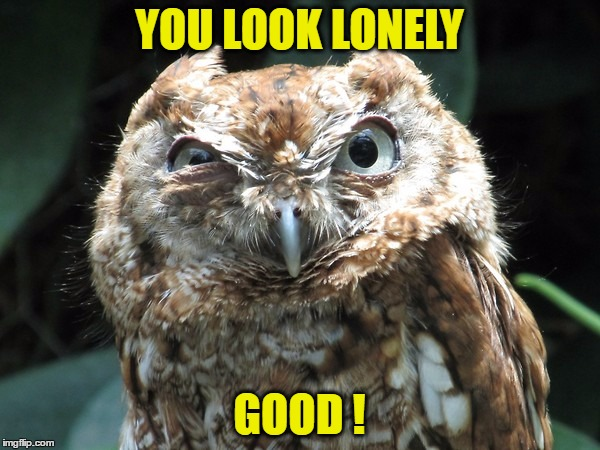 YOU LOOK LONELY GOOD ! | made w/ Imgflip meme maker