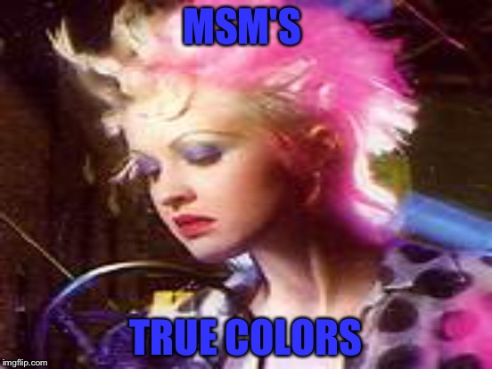 MSM'S TRUE COLORS | made w/ Imgflip meme maker