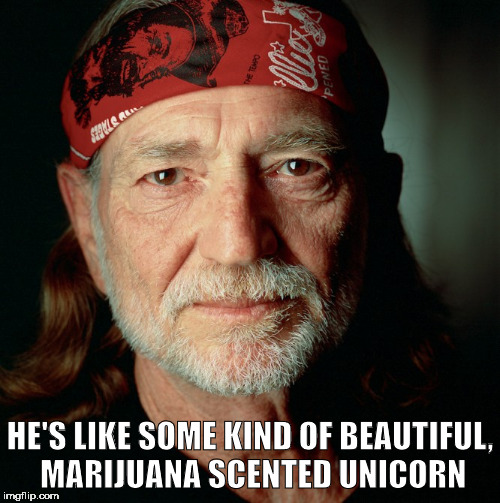 Willie Nelson  | HE'S LIKE SOME KIND OF BEAUTIFUL, MARIJUANA SCENTED UNICORN | image tagged in willie nelson | made w/ Imgflip meme maker