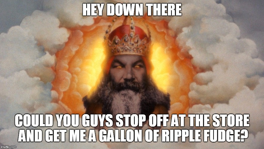HEY DOWN THERE COULD YOU GUYS STOP OFF AT THE STORE AND GET ME A GALLON OF RIPPLE FUDGE? | made w/ Imgflip meme maker