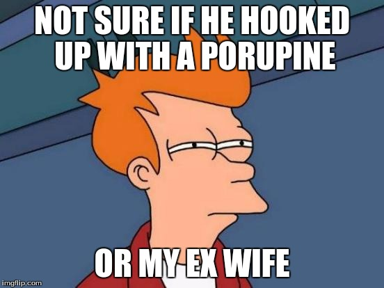Futurama Fry Meme | NOT SURE IF HE HOOKED UP WITH A PORUPINE OR MY EX WIFE | image tagged in memes,futurama fry | made w/ Imgflip meme maker