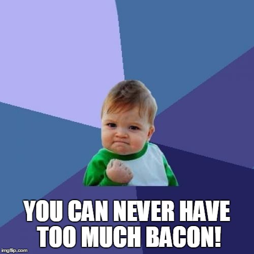 Success Kid Meme | YOU CAN NEVER HAVE TOO MUCH BACON! | image tagged in memes,success kid | made w/ Imgflip meme maker