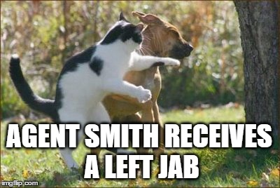 AGENT SMITH RECEIVES A LEFT JAB | made w/ Imgflip meme maker