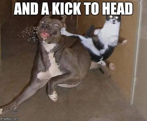 AND A KICK TO HEAD | made w/ Imgflip meme maker