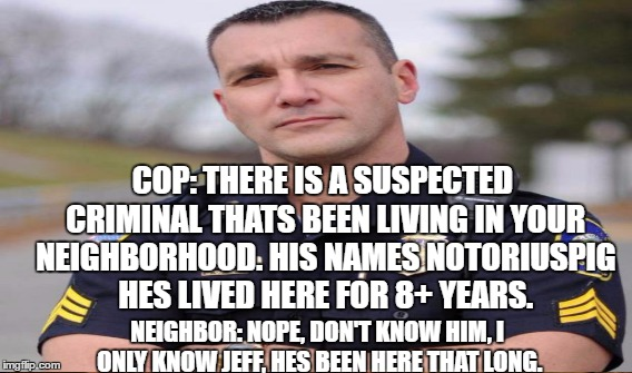 COP: THERE IS A SUSPECTED CRIMINAL THATS BEEN LIVING IN YOUR NEIGHBORHOOD. HIS NAMES NOTORIUSPIG HES LIVED HERE FOR 8+ YEARS. NEIGHBOR: NOPE | made w/ Imgflip meme maker