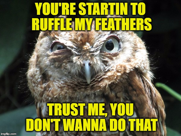 YOU'RE STARTIN TO RUFFLE MY FEATHERS TRUST ME, YOU DON'T WANNA DO THAT | made w/ Imgflip meme maker
