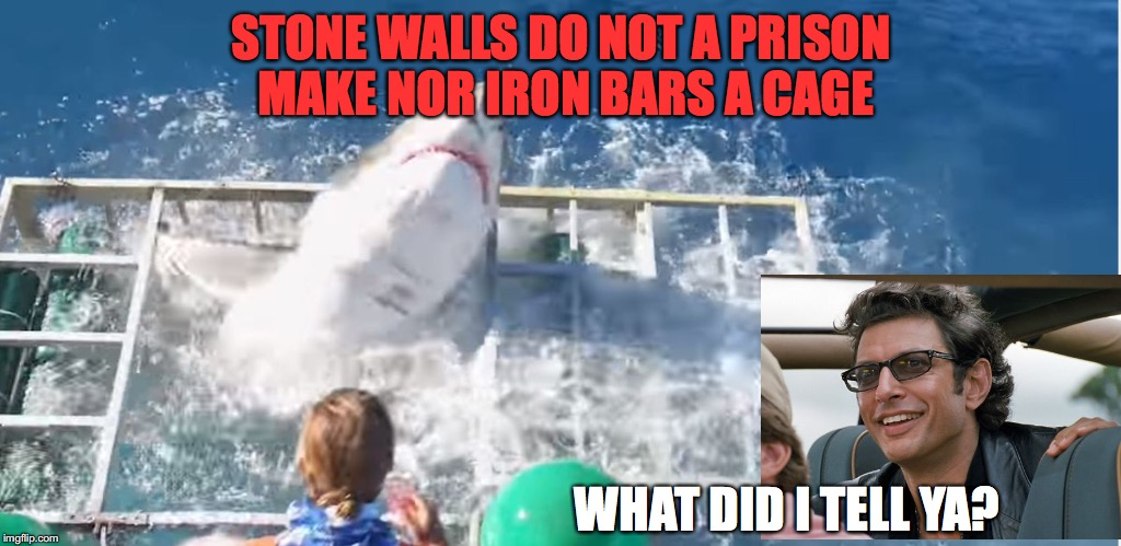 Nature will find a way | STONE WALLS DO NOT A PRISON MAKE NOR IRON BARS A CAGE WHAT DID I TELL YA? | image tagged in sharks,cage,diver | made w/ Imgflip meme maker