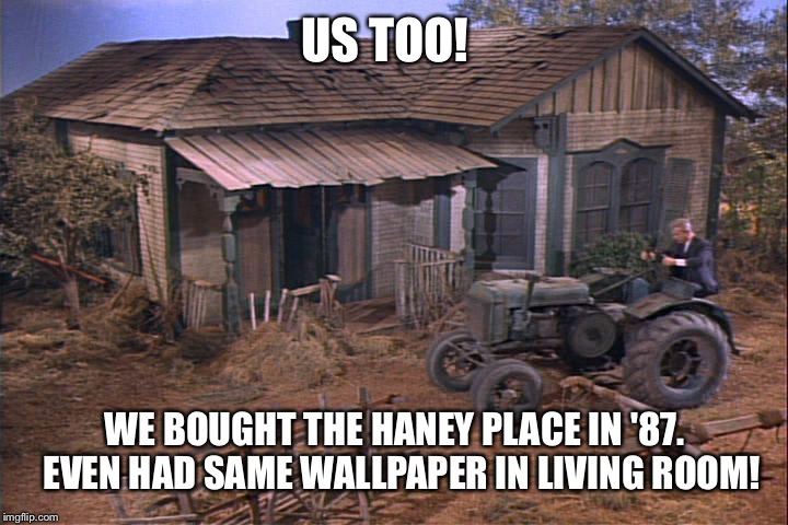 US TOO! WE BOUGHT THE HANEY PLACE IN '87.  EVEN HAD SAME WALLPAPER IN LIVING ROOM! | made w/ Imgflip meme maker