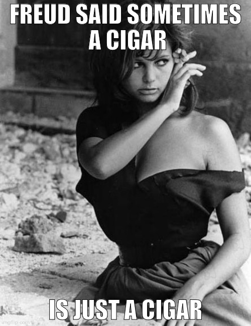 Freud said | FREUD SAID SOMETIMES A CIGAR IS JUST A CIGAR | image tagged in freud,psychoanalysis,sex,eros,vagina | made w/ Imgflip meme maker
