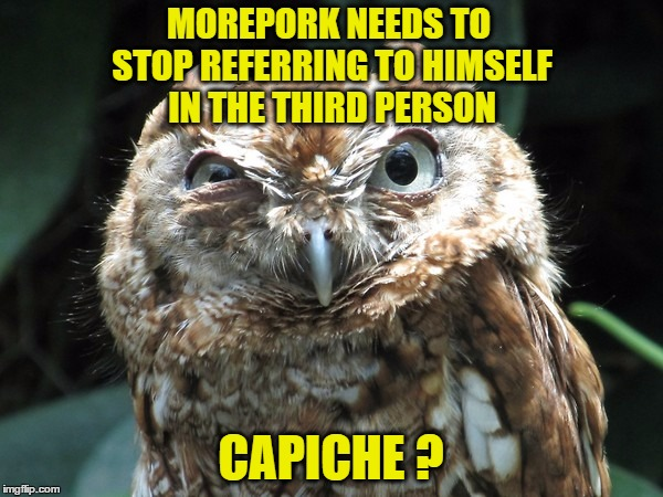 MOREPORK NEEDS TO STOP REFERRING TO HIMSELF IN THE THIRD PERSON CAPICHE ? | made w/ Imgflip meme maker