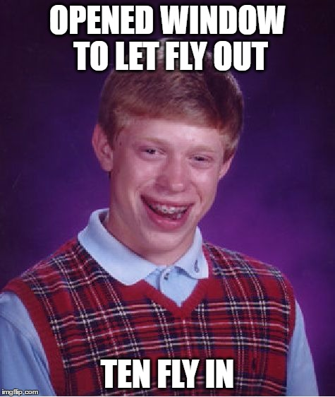 Bad Luck Brian Meme | OPENED WINDOW TO LET FLY OUT TEN FLY IN | image tagged in memes,bad luck brian | made w/ Imgflip meme maker