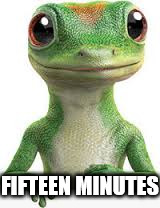 geico | FIFTEEN MINUTES | image tagged in geico | made w/ Imgflip meme maker
