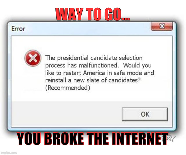 now i'm going to have to play minesweeper :( | WAY TO GO... YOU BROKE THE INTERNET | image tagged in welcome to the internets,presidential race,merica,reboot | made w/ Imgflip meme maker