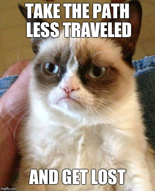 veryimportantadvice.jpeg | TAKE THE PATH LESS TRAVELED AND GET LOST | image tagged in memes,grumpy cat,get lost,take the path less travelled,important | made w/ Imgflip meme maker