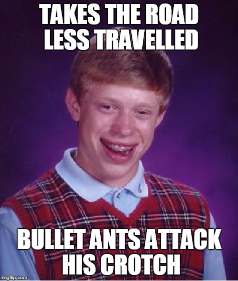 Bad Luck Brian Meme | TAKES THE ROAD LESS TRAVELLED BULLET ANTS ATTACK HIS CROTCH | image tagged in memes,bad luck brian | made w/ Imgflip meme maker