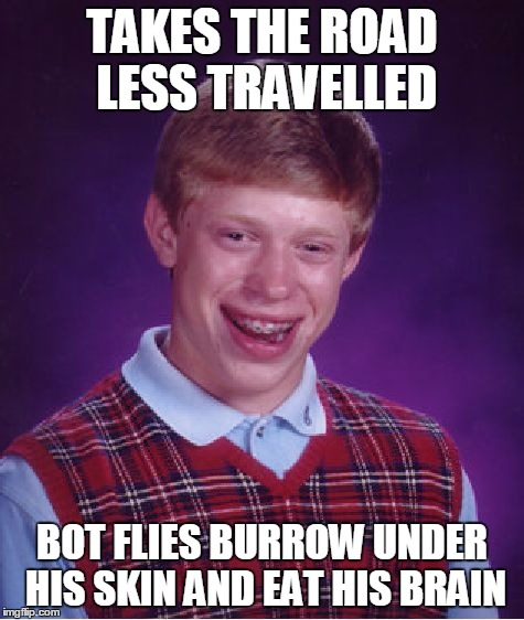 Bad Luck Brian Meme | TAKES THE ROAD LESS TRAVELLED BOT FLIES BURROW UNDER HIS SKIN AND EAT HIS BRAIN | image tagged in memes,bad luck brian | made w/ Imgflip meme maker