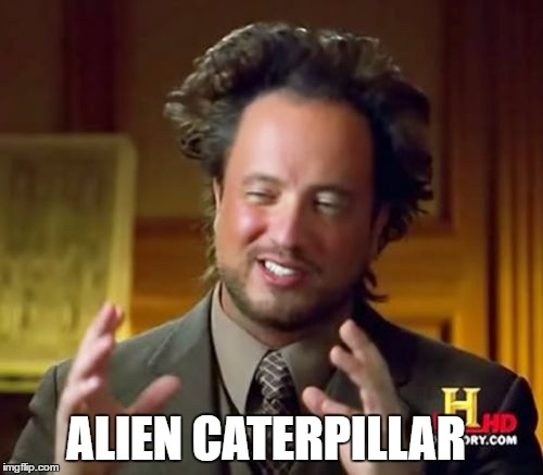 Ancient Aliens Meme | ALIEN CATERPILLAR | image tagged in memes,ancient aliens | made w/ Imgflip meme maker