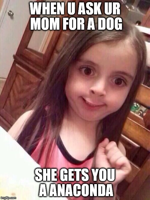 Little girl funny smile |  WHEN U ASK UR MOM FOR A DOG; SHE GETS YOU A ANACONDA | image tagged in little girl funny smile | made w/ Imgflip meme maker