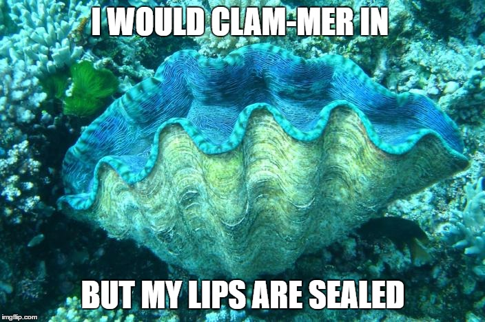 I WOULD CLAM-MER IN BUT MY LIPS ARE SEALED | made w/ Imgflip meme maker