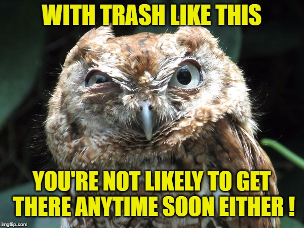WITH TRASH LIKE THIS YOU'RE NOT LIKELY TO GET THERE ANYTIME SOON EITHER ! | made w/ Imgflip meme maker