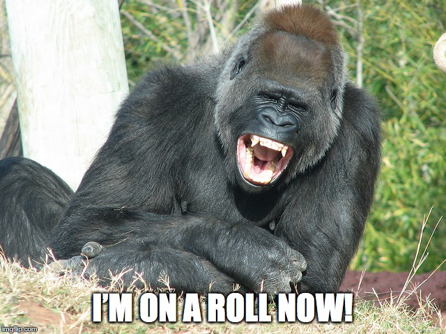 I'M ON A ROLL NOW! | made w/ Imgflip meme maker