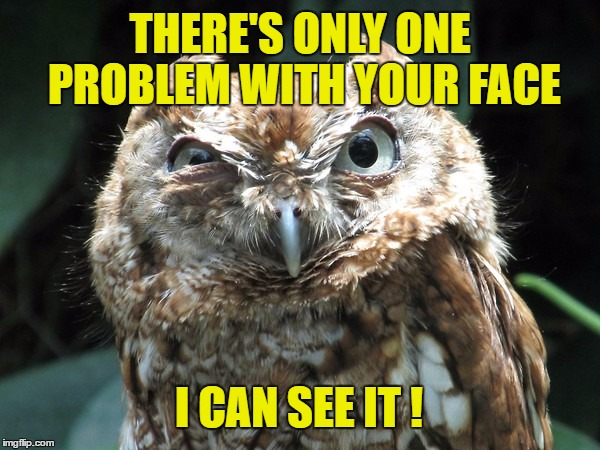 THERE'S ONLY ONE PROBLEM WITH YOUR FACE I CAN SEE IT ! | image tagged in ornery owl,ugly,owl,owls,ugly face | made w/ Imgflip meme maker