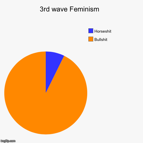 3rd wave Feminism  | Bullshit, Horseshit | image tagged in funny,pie charts | made w/ Imgflip pie chart maker