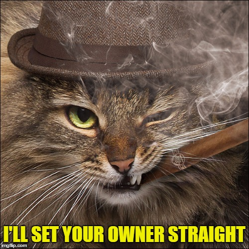 I'LL SET YOUR OWNER STRAIGHT | made w/ Imgflip meme maker