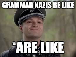 Grammar nazis in a nutshell | GRAMMAR NAZIS BE LIKE *ARE LIKE | image tagged in memes | made w/ Imgflip meme maker