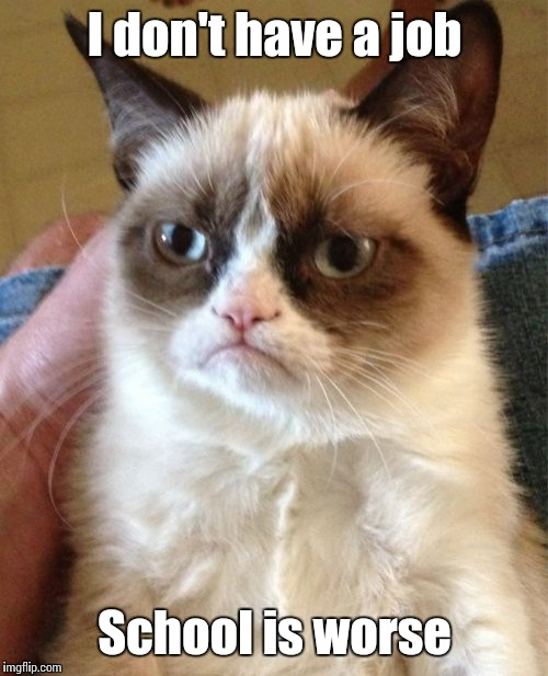 Grumpy Cat Meme | I don't have a job School is worse | image tagged in memes,grumpy cat | made w/ Imgflip meme maker