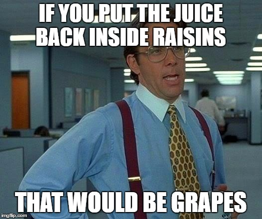 That Would Be Great Meme | IF YOU PUT THE JUICE BACK INSIDE RAISINS THAT WOULD BE GRAPES | image tagged in memes,that would be great | made w/ Imgflip meme maker