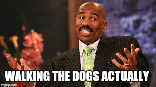 Steve Harvey Meme | WALKING THE DOGS ACTUALLY | image tagged in memes,steve harvey | made w/ Imgflip meme maker