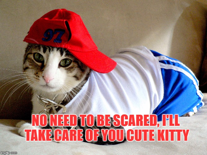 NO NEED TO BE SCARED, I'LL TAKE CARE OF YOU CUTE KITTY | made w/ Imgflip meme maker