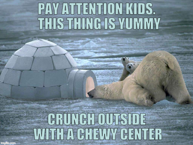 Polar Bears Love Igloos | PAY ATTENTION KIDS.  THIS THING IS YUMMY CRUNCH OUTSIDE WITH A CHEWY CENTER | image tagged in polar bear igloo,eskimo,inuit,chewy center,crunchy | made w/ Imgflip meme maker