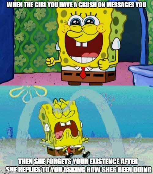 story of my life!  | WHEN THE GIRL YOU HAVE A CRUSH ON MESSAGES YOU THEN SHE FORGETS YOUR EXISTENCE AFTER SHE REPLIES TO YOU ASKING HOW SHES BEEN DOING | image tagged in spongebob happy and sad,memes,funny,crush,women,forgotten | made w/ Imgflip meme maker