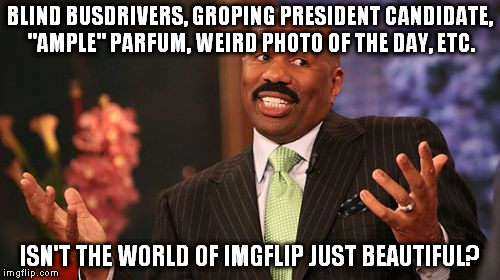 "Steve Harvey Meme | BLIND BUSDRIVERS, GROPING PRESIDENT CANDIDATE, ""AMPLE"" PARFUM, WEIRD PHOTO OF THE DAY, ETC. ISN'T THE WORLD OF IMGFLIP JUST BEAUTIFUL? 