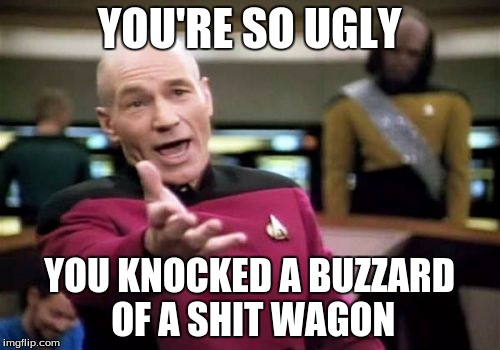 Picard Wtf Meme | YOU'RE SO UGLY YOU KNOCKED A BUZZARD OF A SHIT WAGON | image tagged in memes,picard wtf | made w/ Imgflip meme maker