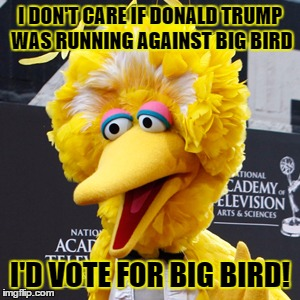 Big Bird Meme |  I DON'T CARE IF DONALD TRUMP WAS RUNNING AGAINST BIG BIRD; I'D VOTE FOR BIG BIRD! | image tagged in memes,big bird | made w/ Imgflip meme maker