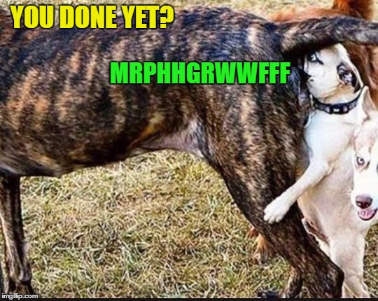 YOU DONE YET? MRPHHGRWWFFF | made w/ Imgflip meme maker